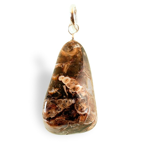 Agate à fossiles roulée, pendentif