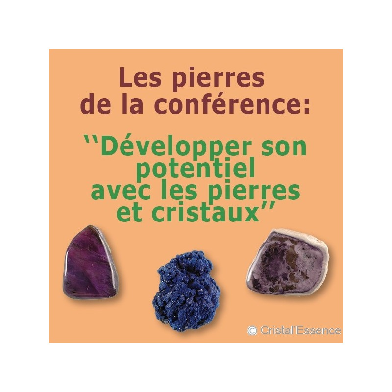 Developper son potentiel avec les pierres et cristaux PDF
