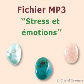 Stress et émotions